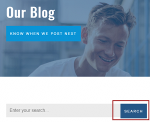search option for blogs